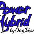 PowerHybrid Logo